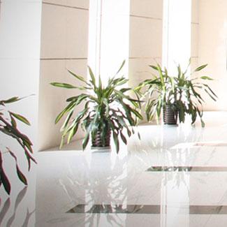Limpieza de hoteles con ozonización, desinfección y eliminación de olores